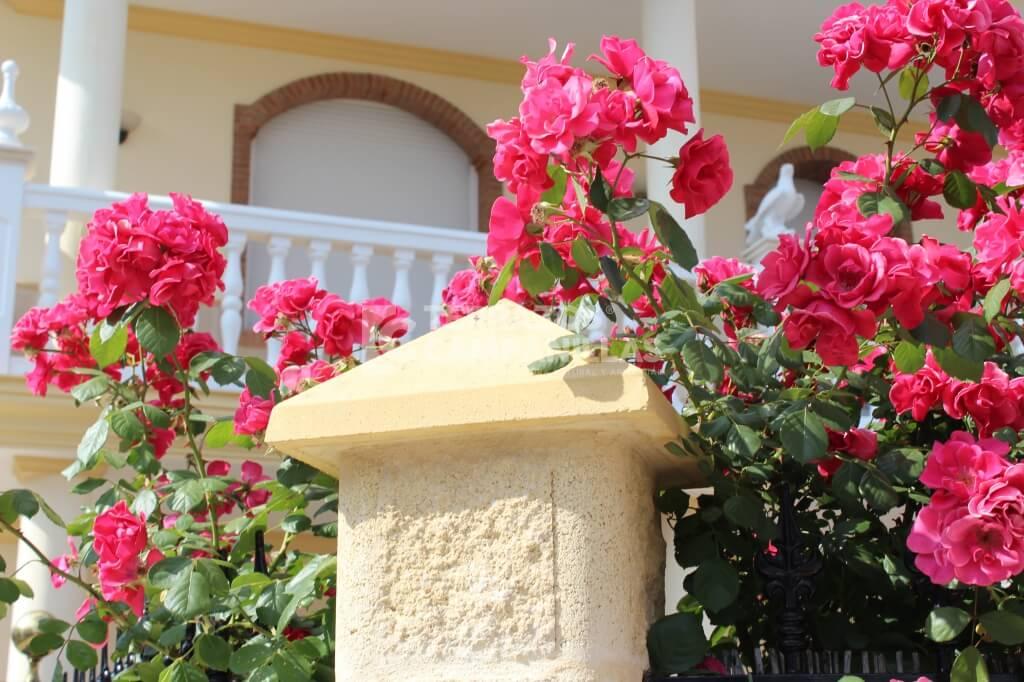 Bloques y pilares prefabricados de hormig n en terrazos - Bloques de hormigon decorativos ...